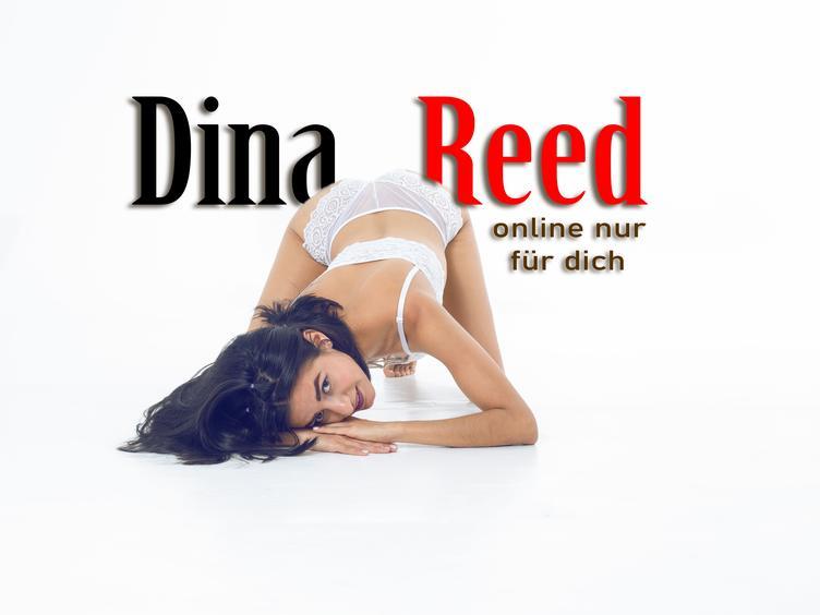 Der Duft von Lust und Sünde Dina Reed [cpb_autotext catalog=